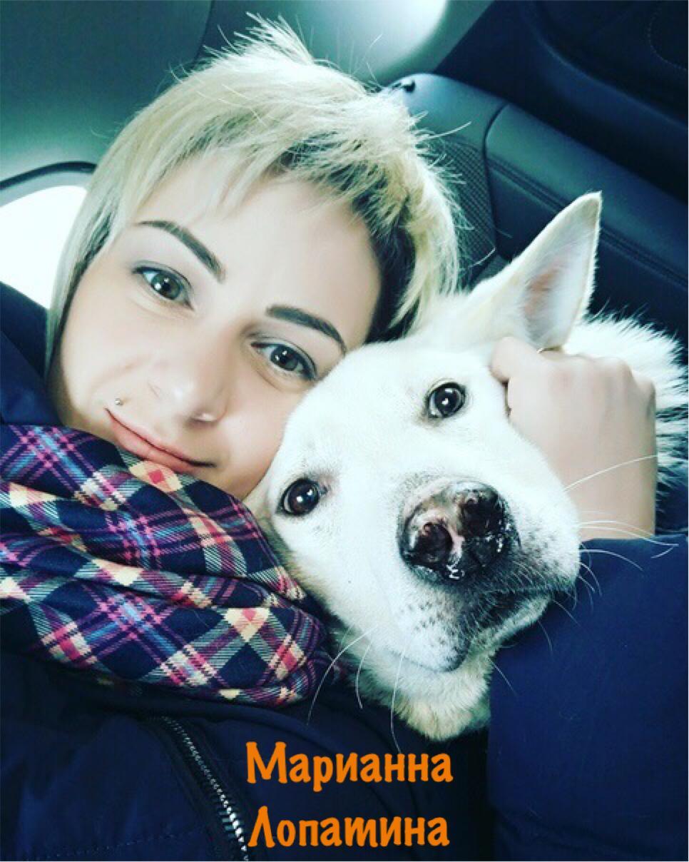 Клео косметика для собак